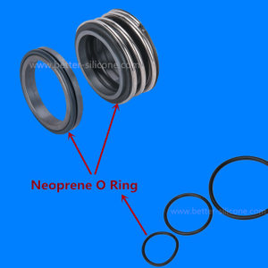 CR Shaft & Pump Seals